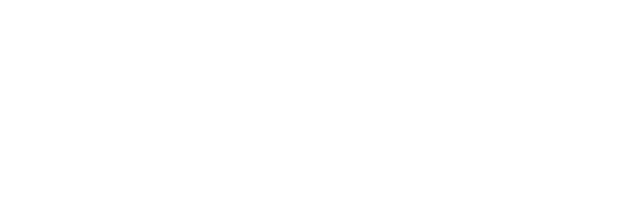 The birth of functional fiber AGposs®